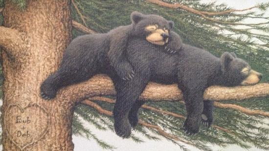 Bear Market 1.27.14